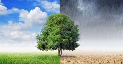 خوب موسلا دھار بارشوںکے بعد یہ کیاخبر آگئی ؟موسم نے کروٹ لے لی ، اگلے 24گھنٹوںمیں کیا ہونے والاہے ؟