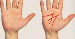 کیا آپ کی ہتھیلی کی لکیریں M کا نشان بناتی ہیں؟ جانیں ماہرین کے مطابق اس کا مطلب جو یقیناً آپ پہلے نہیں جانتے ہوں گے