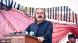 جتنے ووٹ ملیں گے، اتنے روڈ بنیں گے، علی امین گنڈا پور کا جلسے میں اعلان