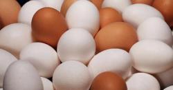 انڈوںکی قیمت میں بھی اضافہ کردیا گیا