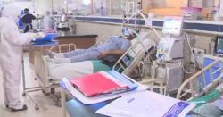 5یا 6نہیں بلکہ کورونا سے پاکستان میں کتنے ہزار افراد جاں بحق ہو گئے۔۔؟ پوری قوم کے ہوش اڑا دینے والے اعداد وشمار جاری