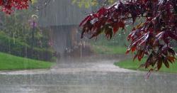 اسلام آباد اور فیصل آباد میں موسم سرما کی پہلی بارش، لاہور میں بھی بادل برسنے کا امکان