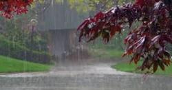بادل ایک بار پھر برس پڑے،کون کون سے علاقوں میں بارش ہو رہی ہے؟ سلسلہ کتنے دن تک جاری رہے گا؟جانیے تفصیل