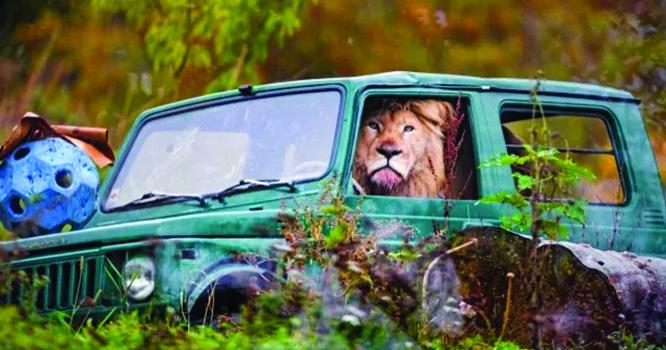 عوام ہکا بکا ، خوفناک ببر شیر کار میں ڈرائیونگ سیٹپر آیا اور پھر ۔۔۔! تفصیلات لنک میں