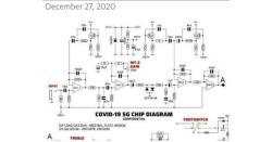 کوروناویکسین کے ذریعے انسانوں میں مائیکروچپ داخل کرنیکامنصوبہ ،5جی مائیکروچپ کی تصاویرسوشل میڈیاپروائرل