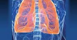 سینے کی جکڑ، حلق کی بیماری ، پھیپھڑوں کا انفکیشن یہاں تک کے دمہ بھی ٹھیک