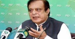 ملک میں بجلی کی پیداوارکے پلانٹس تو بن گئے لیکن۔۔۔وفاقی وزیرشبلی فراز نے حیران کن بات کہہ دی