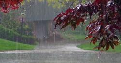 محکمہ موسمیات نےشدید دھند اوربارشوں کی پیش گوئی کردی