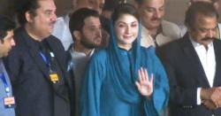 این آر او لیگ روزانہ سرکس لگاتی ہے، مراد سعید