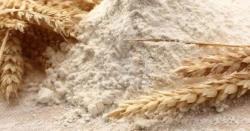 حکومت آٹا مہنگا کرکے غریبوں کے منہ سے  روٹی کا نوالہ چھیننے کے درپے ہے