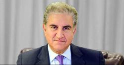بھارت پاکستان کو بلیک لسٹ میں شامل کروانے میں ناکام رہا، شاہ محمود قریشی