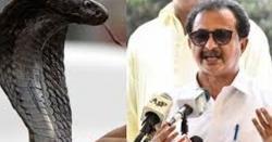 سانپ کو کیسے مارا ؟  DSP آئے تو سانپ زندہ تھا۔۔۔ اپوزیشن لیڈر سندھ حلیم عادل شیخ نے پورا واقعہ بیان کردیا