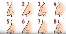 کیا آپ کی ناک بھی ایسی ہے جانیں ناک کا نقشہ آپ کی شخصیت کے بارے میں کیا راز بتاتا ہے؟