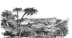 حضرت بلال حبشی ؓ امیہ بن خلف کے غلام تھے ۔بکریاں چرانے کی خدمت سرانجام دیتے تھے: ایمان افروز واقعہ