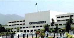 73 سال بعد اوورسیز پاکستانیوں کو ووٹ کا حق ملنے کیلئے بل منظور
