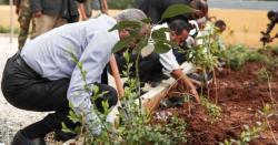 گورنمنٹ بوائز ایلیمنٹری سکول دہلہ میں شجرکاری مہم کا افتتاح